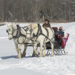 Misty Haven Carriage Sleigh Ride