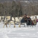 Misty Haven Carriage Sleigh Rides
